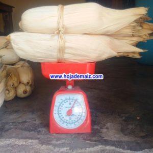 Hoja de maiz para tamal